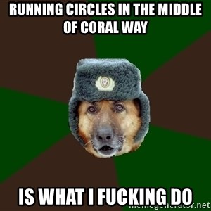 army-dog - running circles in the middle of coral way is what i fucking do