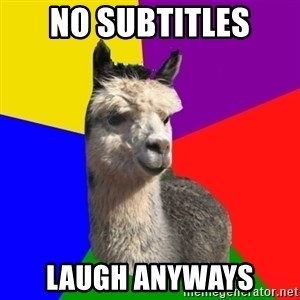 Arashian Alpaca - no subtitles laugh anyways