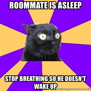 Anxiety Cat - roommate is asleep stop breathing so he doesn't wake up