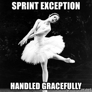 Pensive_Ballerina - Sprint Exception Handled Gracefully