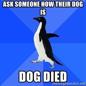 Socially Awkward Penguin - Ask someone how their dog is Dog died