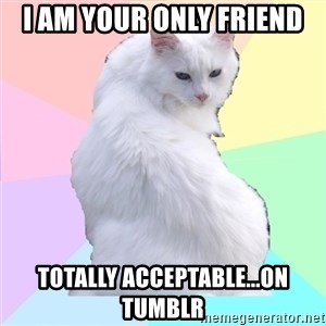 Beauty Addict Kitty - I AM YOUR ONLY FRIEND TOTALLY ACCEPTABLE...ON TUMBLR