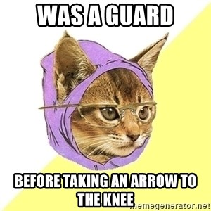 Hipster Kitty - was a guard before taking an arrow to the knee