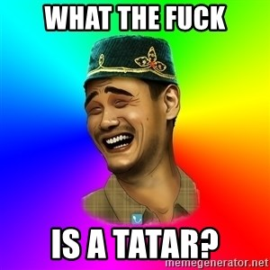 Typical tatar - what the fuck is a tatar?