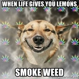 Stoner Dog - when life gives you lemons smoke weed