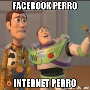 X, X Everywhere  - facebook perro  internet perro