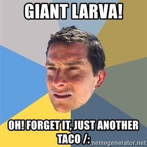 Bear Grylls - GIANT LARVA! oh! forget it, just another taco /: