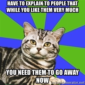 Introvert Cat - Have to explain to people that while you like them very much You need them to go away now