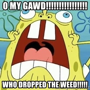 Enraged Spongebob - o my gawd!!!!!!!!!!!!!!!! who DROPPED the weed!!!!!