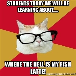 Intelligent Cat - students today we will be learning about..... WHERE THE HELL IS MY FISH LATTE!
