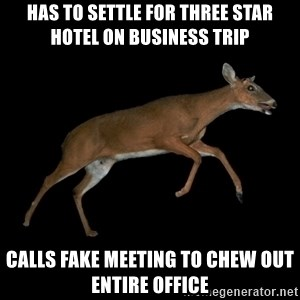 Drama Deer - has to settle for three star hotel on business trip calls fake meeting to chew out entire office