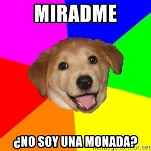 Advice Dog - miradme ¿no soy una monada?