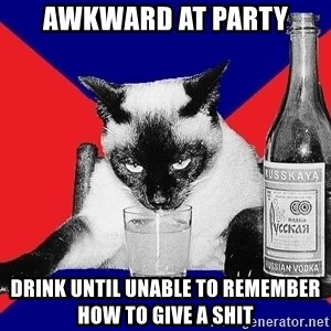 Alco-cat - awkward at party drink until unable to remember how to give a shit
