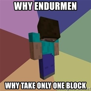 Depressed Minecraft Guy - why endurmen  why take only one block