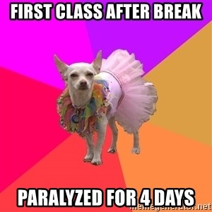 Ballet Chihuahua - First class after break paralyzed for 4 days