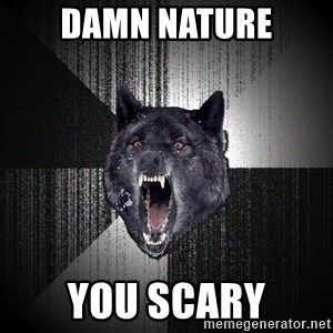 Insanity Wolf - DAMN NATURE YOU SCARY