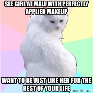 Beauty Addict Kitty - See girl at mall with perfectly applied makeup Want to be just like her for the rest of your life