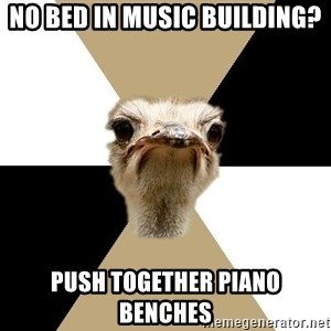Music Major Ostrich - No bed in Music building? Push together piano benches