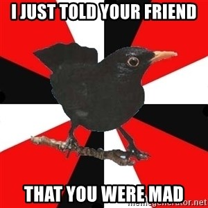 Socionic Bird - I JUST TOLD YOUR FRIEND THAT YOU WERE MAD