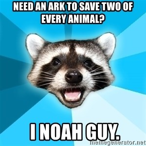 Lame Pun Coon - Need an ark to save two of every animal?  I NOAH GUY.