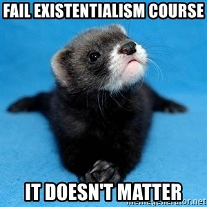 Philosophy Major Ferret - Fail existentialism course it doesn't matter