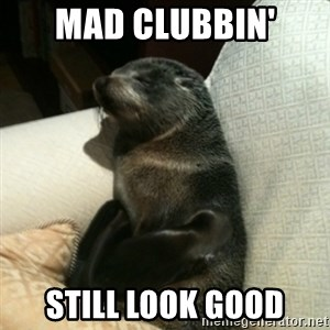 Baby Seal On Couch - mad clubbin' still look good