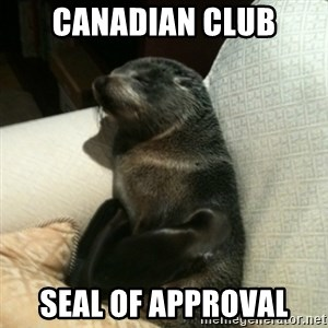 Baby Seal On Couch - CanadIAn club Seal of approval