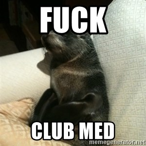 Baby Seal On Couch - FUCK CLUB MED