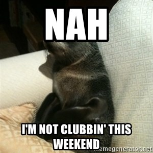 Baby Seal On Couch - Nah I'm not clubbin' this weekend