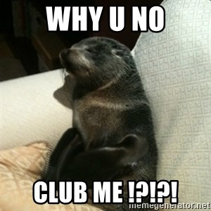 Baby Seal On Couch - WHY U NO CLUB ME !?!?!