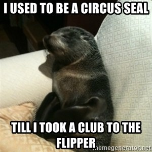 Baby Seal On Couch - I used to be a circus seal till I took a club to the flipper