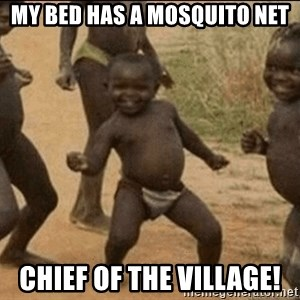 Third World Success - my bed has a mosquito net chief of the village!