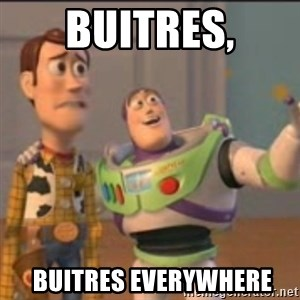Buzz - buitres,  BUITRES EVERYWHERE