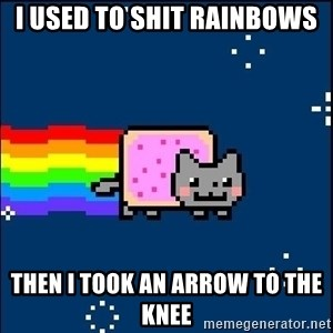 Irresponsible Nyan Cat - I used to shit rainbows then i took an arrow to the knee