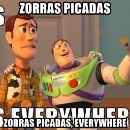 Xx Everywhere - ZORRAS PICADAS zORRAS PICADAS, EVERYWHERE
