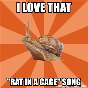 "Clueless Casual Pumpkins Fan Snail - i love that ""rat in a cage"" song"