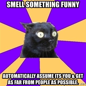 Anxiety Cat - Smell something funny automatically assume its you & get as far from people as possible.