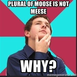Why Kid - Plural of Moose is not Meese why?
