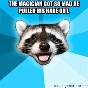 Lame Pun Coon - The magician got so mad he pulled his hare out.