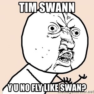 y u no meme - tim swann Y U NO FLY LIKE SWAN?