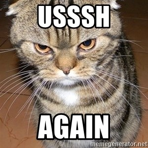 angry cat 2 - usssh again