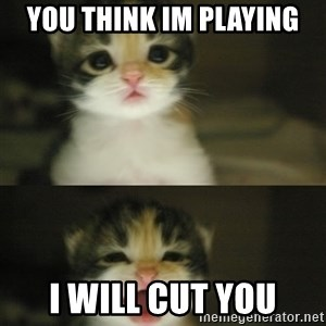 Adorable Kitten - you think im playing i will cut you