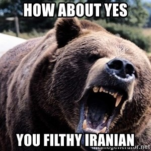 Bear week - How about yes you filthy iranian