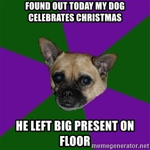 WTF dog - Found out today my dog celebrates christmas He left big present on floor