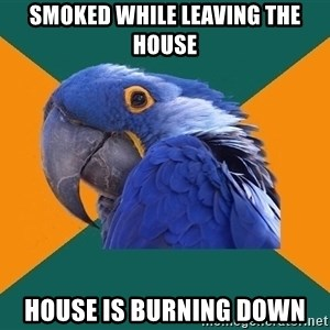 Paranoid Parrot - Smoked while leaving the house house is burning down