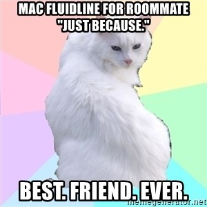 """Beauty Addict Kitty - MAc fluidline for roommate """"just because."""" Best. Friend. Ever."""