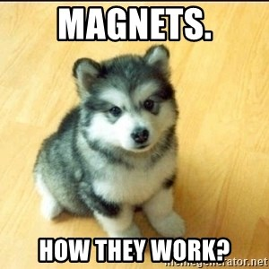 Baby Courage Wolf - MAGNETS. HOW THEY WORK?