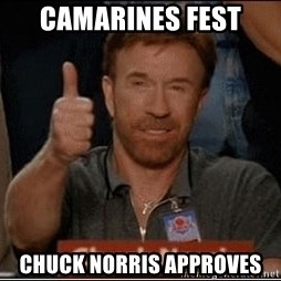 Chuck Norris Approves - camarines fest chuck norris approves