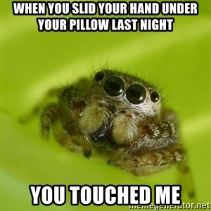 The Spider Bro - When YOU SLID YOUR HAND UNDER YOUR PILLOW LAST NIGHT YOU TOUCHED ME