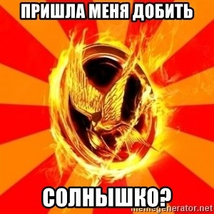 Typical fan of the hunger games - пришла меня добить СОЛнышко?